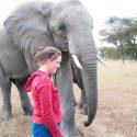 Kama and elephant color